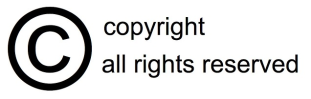 Licence In copyright icon